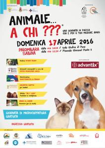 WEB_animale-a-chi_palombara_sabina_front
